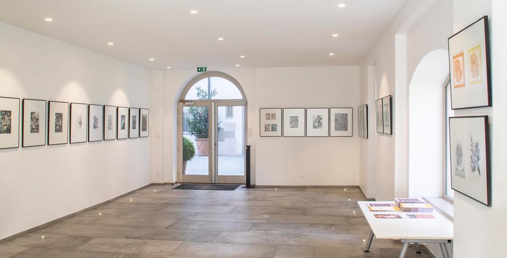 Réouverture des lieux culturels : les expos de Cohliens à ne pas manquer